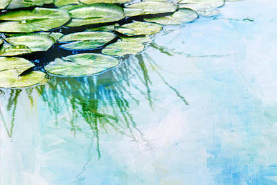 Water Lily Pads Poster by Rebecca Cozart
