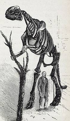 Waterhouse Hawkins And Hadrosaur, 1868 Poster by Paul D. Stewart