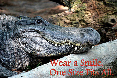 Wear A Smile/smiling Alligator Poster by Kathy  White