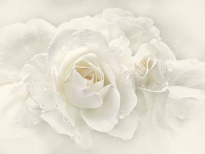 Wedding Day White Roses Poster by Jennie Marie Schell