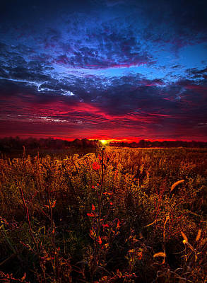 We'ld Do It All Again Poster by Phil Koch
