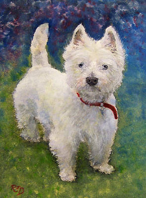 West Highland Terrier Holly Poster by Richard James Digance