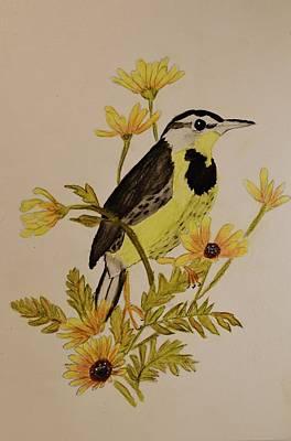 Western Meadowlark Poster by Linda Brown