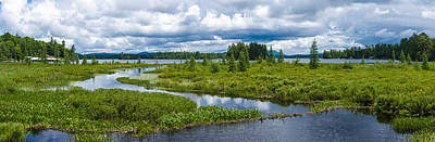 Wetlands Near Raquette Lake Poster by Panoramic Images