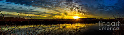 Wetlands Sunset Poster by Michael Cross