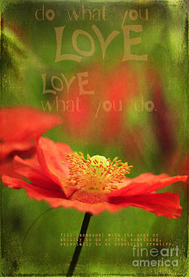 What You Love Poster by Darren Fisher