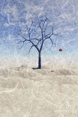 When The Last Leaf Falls... Poster by John Edwards