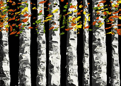 White Birch Trees In Fall On Black Background Painting Poster by Keith Webber Jr