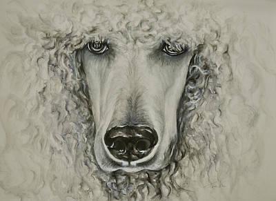 White Poodle Poster by Christina Frenken
