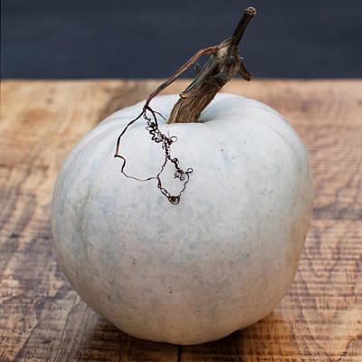 White Pumpkin Poster by Indigo Schneider