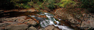 White Water The Great Smoky Mountains Poster by Panoramic Images