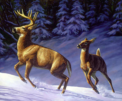 Whitetail Deer Painting - Startled Poster by Crista Forest