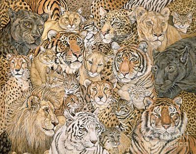 Wild Cat Spread Poster by Ditz