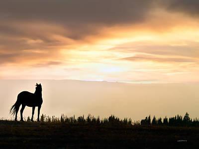 Wild Horse Sunset Poster by Leland D Howard