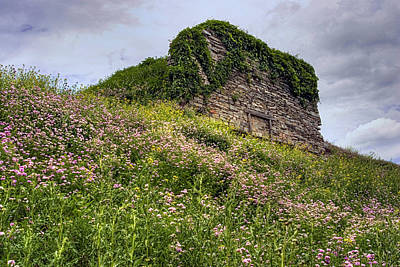 Wildflowers And Vines Surround The Loyalsock Stonework Lime Kiln Poster by Gene Walls