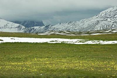 Wildflowers On Campo Imperatore Poster by Bob Gibbons