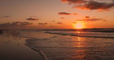 Wildwood Beach Sunrise II Poster by David Dehner