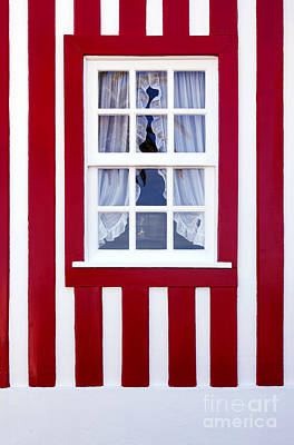 Window On Stripes Poster by Carlos Caetano