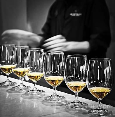 Wine Tasting Glasses Poster by Elena Elisseeva