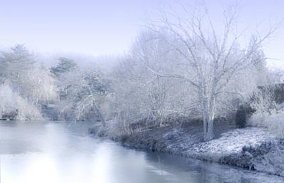Winter Blue And White Poster by Julie Palencia