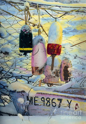 Winter Buoys Poster by Cindy McIntyre