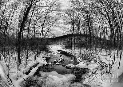 Winter Creek Poster by Mark Miller