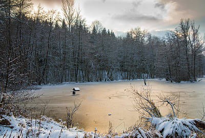 Winter Landscape With Frozen Lake And Warm Evening Twilight Poster by Matthias Hauser