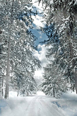 Winter Me Poster by Diana Angstadt