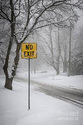 Winter Road During Snowfall II Poster by Elena Elisseeva