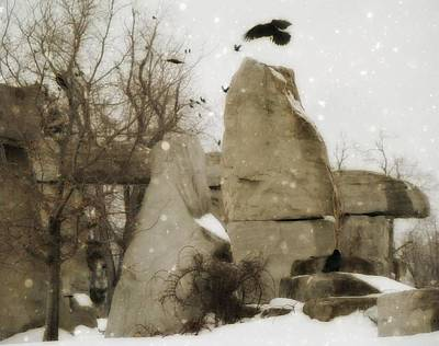 Winter Rocks Poster by Gothicolors Donna Snyder