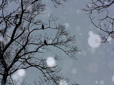 Winter Sky Poster by Gothicrow Images