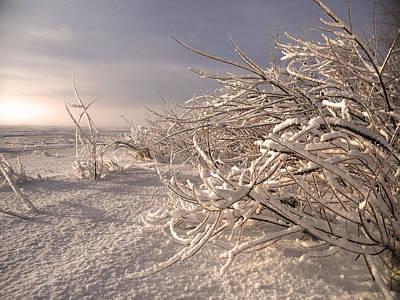 Winter Sun ... Poster by Juergen Weiss