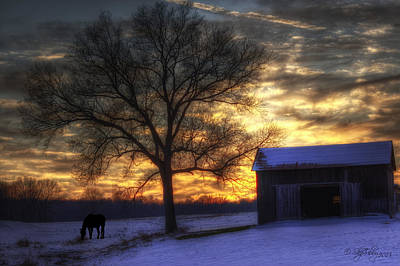 Winter Sunset Poster by Skip Tribby