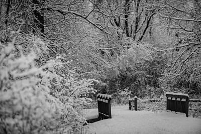 Winter Wonderland Poster by Sebastian Musial