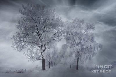 Winter's Magic Poster by Veikko Suikkanen