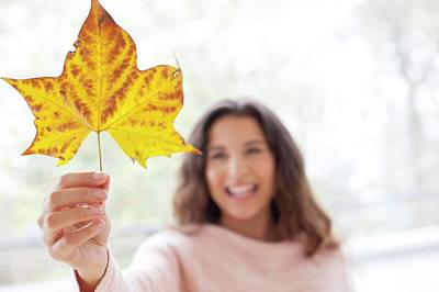 Woman Holding An Autumn Leaf Poster by Ian Hooton
