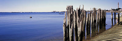 Wooden Posts On The Beach Poster by Panoramic Images