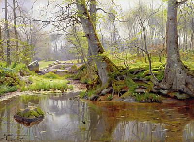 Woodland Pond Poster by Peder Monsted
