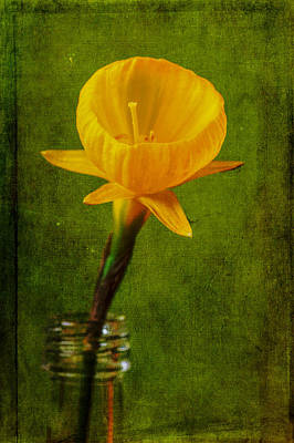 Yellow Flower In A Bottle II Poster by Marco Oliveira