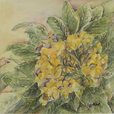 Yellow Primrose Poster by Lynne Bolwell