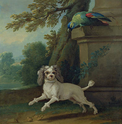 Zaza, The Dog, C.1730 Oil On Canvas Poster by Jean-Baptiste Oudry