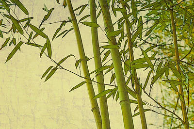 Zen Bamboo Abstract I Poster by Marianne Campolongo