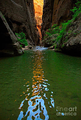 Zion Reflections - The Narrows At Zion National Park. Poster by Jamie Pham