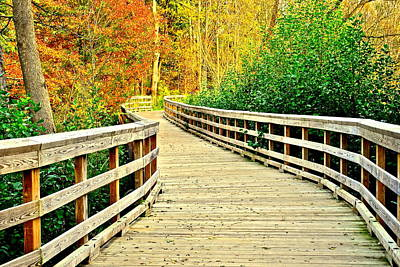 Zoom Zoom Walking Path Poster by Frozen in Time Fine Art Photography