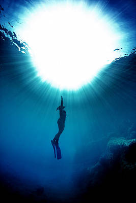 The Freediver Poster by Rico Besserdich