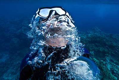 A Free Diver Exhales Poster by Jason Edwards