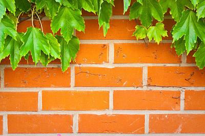 Brick Wall Poster by Tom Gowanlock