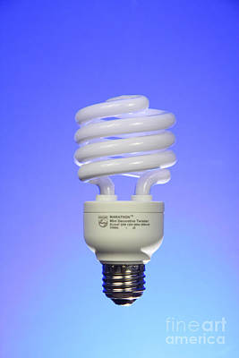 Compact Fluorescent Light Bulb Poster by Photo Researchers, Inc.