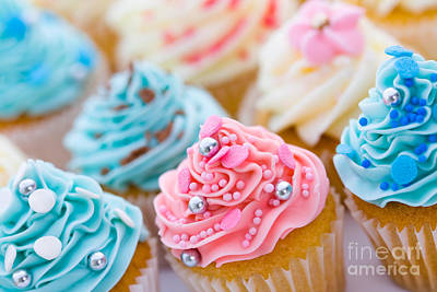 Cupcake Assortment Poster by Ruth Black