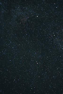 Cygnus Constellation Poster by John Sanford